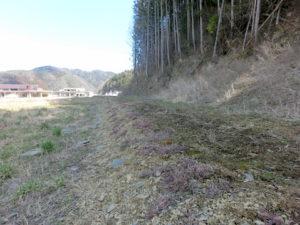 大川小を見守る花壇