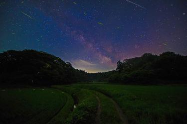田んぼの中の「蝋燭と蛍のカフェ」秋田・男鹿半島
