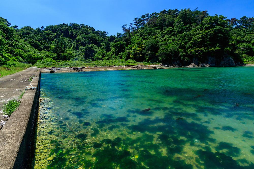 澄んだ海と濃い緑がまぶしい大鮫。71年前、特攻隊員たちはどのような思いで眺めていたのだろう(佐瀬雅行撮影)
