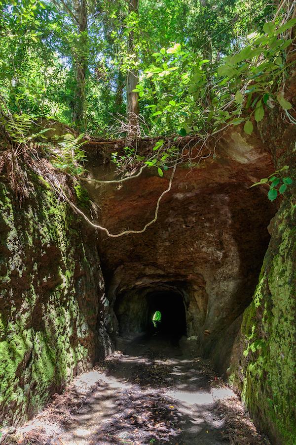 室浜地区の仮設住宅を通り過ぎ、細い道を進むと岩をくりぬいただけのトンネルが姿を現した(佐瀬雅行撮影)