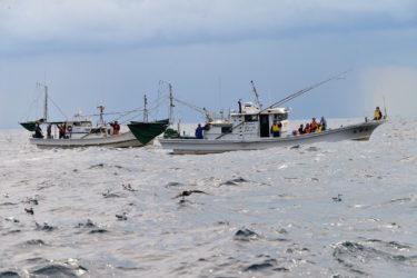 男はいつか、水平線を目指すー秋田・八峰町で3日間の漁業体験