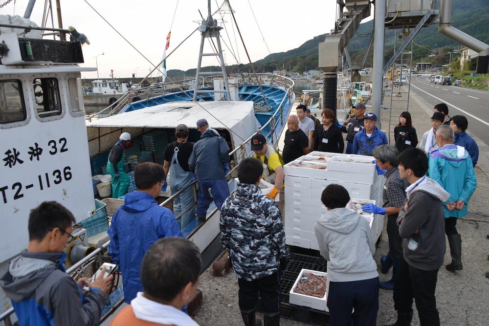 底引き網漁船の水揚げを興味津々に見学する(鐙啓記撮影)