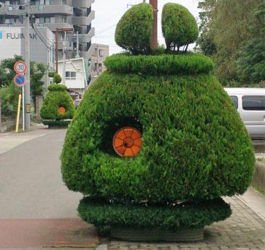 道端で出会った奇妙な植木「グリーンモンスター」の謎に迫った