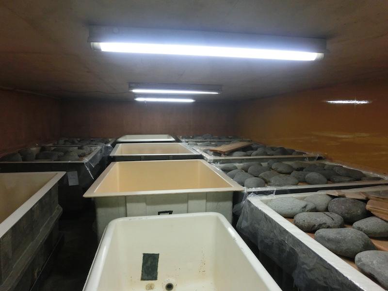 亀兵商店の蔵の中にある味噌を熟成させる室。夏のような暑さの室内には味噌の香りが満ちている(平間真太郎撮影)