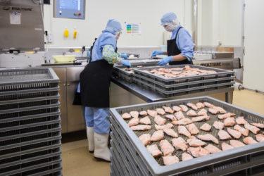 「今何とかしなければ、東北だけが出遅れる」東北の食品輸出の今