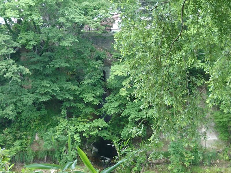 対岸から見えるれんが下水洞窟の放流口(画面中央付近、渡邊真子撮影)