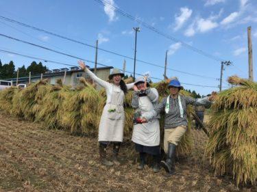 男鹿の「小ぢんまり」な米作り、その体験報告