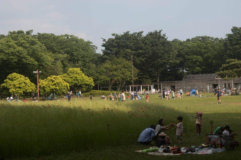 お父さんは子どもとキャッチボールやバドミントン。お母さんはテントの中。5月下旬の公園広場で、たくさんの家族が思い思いに時間をすごしていた(小林知史撮影)