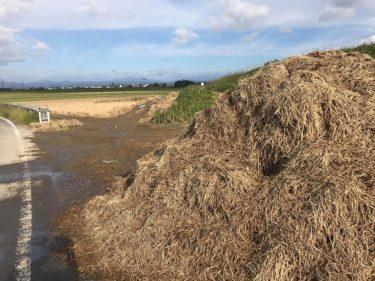 【台風19号】土地や河川へのダメージが今後の農業に影響 宮城県色麻町