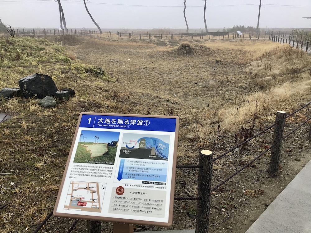 津波でえぐられた土地の遺構