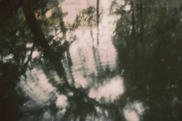 【写真と詩の連載】もうちょっと後で光って #3