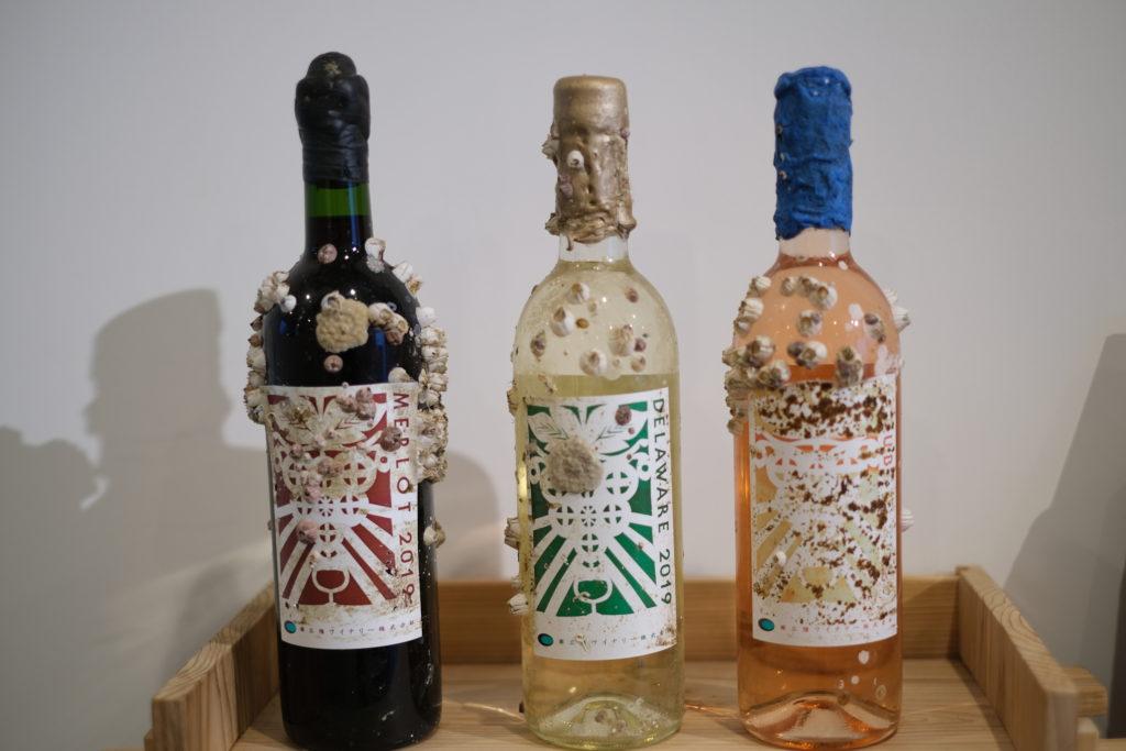 海中熟成させたワイン