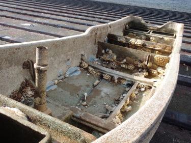 9年9カ月の旅どこで?震災で流出した船が八丈島に漂着 保存に向け有志動く